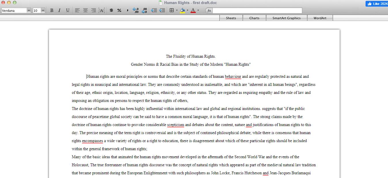 what is essay typer